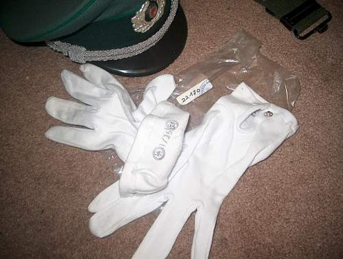 Click image for larger version.  Name:LAHParadeGloves.jpg Views:116 Size:115.5 KB ID:118757
