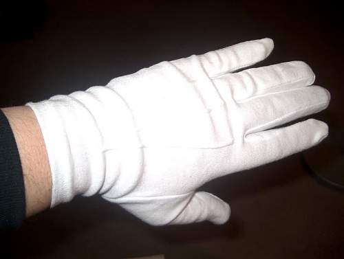 Click image for larger version.  Name:LAHParadeGloves3.jpg Views:105 Size:55.4 KB ID:118760