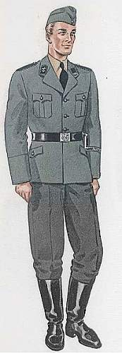 Click image for larger version.  Name:206px-Grey_SS_uniform.jpg Views:1178 Size:28.1 KB ID:126998