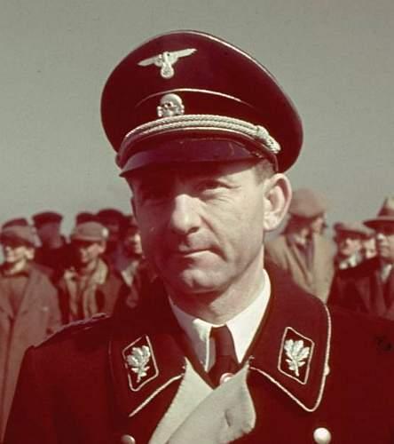 black SS officer's cap