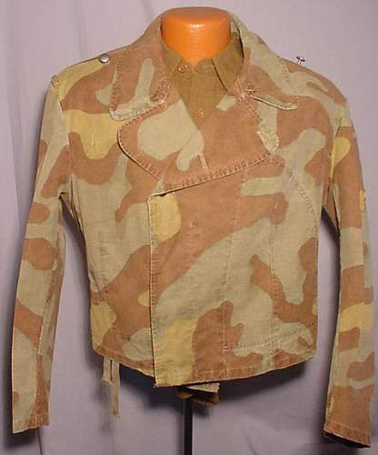Click image for larger version.  Name:LK-2010-08-01-italian-camo-01.jpg Views:428 Size:44.5 KB ID:130383