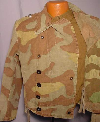 Click image for larger version.  Name:LK-2010-08-01-italian-camo-02.jpg Views:155 Size:49.9 KB ID:130384