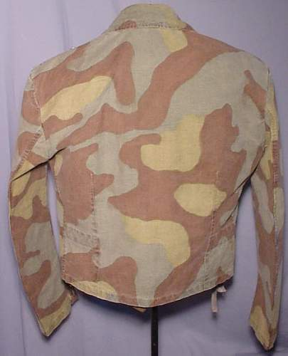 Click image for larger version.  Name:LK-2010-08-01-italian-camo-03.jpg Views:576 Size:38.7 KB ID:130385