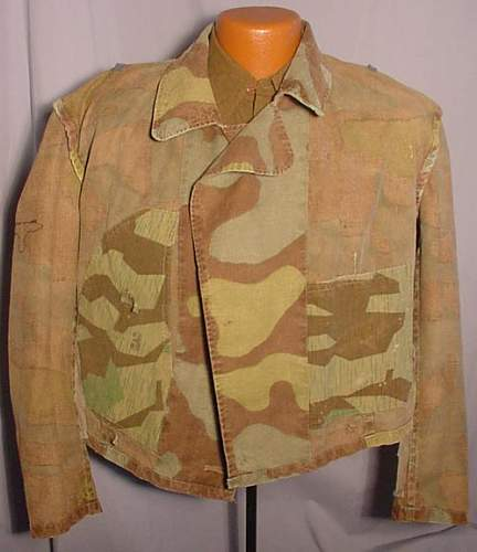 Click image for larger version.  Name:LK-2010-08-01-italian-camo-04.jpg Views:559 Size:47.7 KB ID:130386