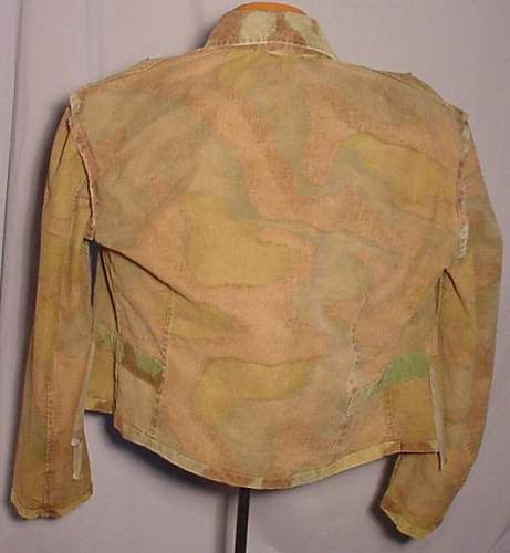 Click image for larger version.  Name:LK-2010-08-01-italian-camo-05.jpg Views:111 Size:42.0 KB ID:130387