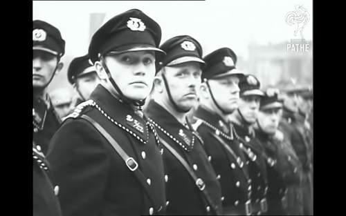 Has anyone seen this cap insignia before?
