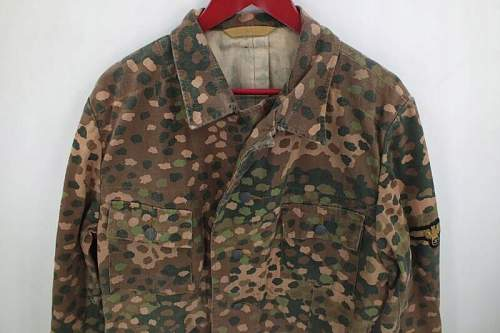 WAFFEN-SS Bluse need opinion find in secound hand