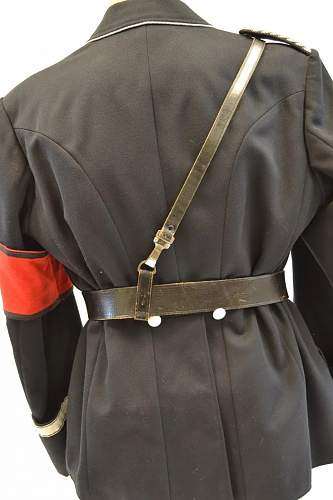 Need Help!  Opinions Please for Allgemeine SS Tunic