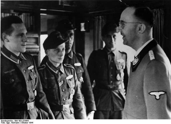 Himmler wearing a Litewka style jacket