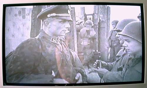 colored piping on cap, 1943...Sturbannfuehrer Bochmann