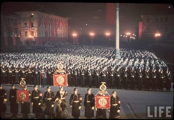 totenkopf regimental standard?
