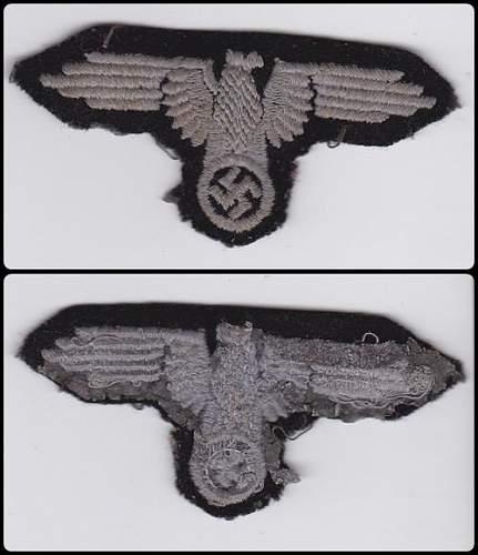 Fake Arm Eagle?