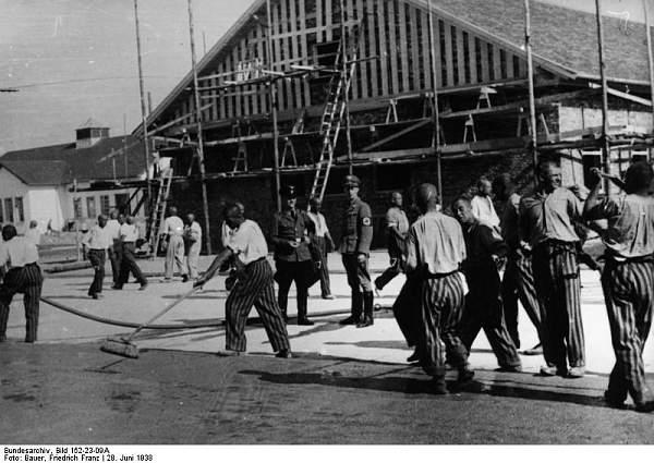 Click image for larger version.  Name:Bundesarchiv_Bild_152-23-09A%2C_Dachau%2C_Konzentrationslager.jpg Views:2204 Size:75.3 KB ID:25439