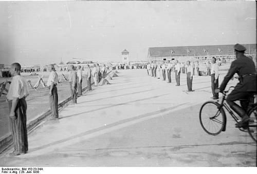 Click image for larger version.  Name:Bundesarchiv_Bild_152-23-34A%2C_Dachau%2C_Konzentrationslager.jpg Views:706 Size:46.4 KB ID:25442
