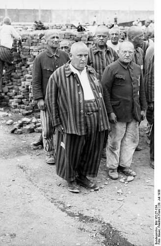 Click image for larger version.  Name:Bundesarchiv_Bild_152-27-13A%2C_Dachau_Konzentrationslager%2C_H%C3%A4ftlinge_beim_Appell.jpg Views:421 Size:74.5 KB ID:25443