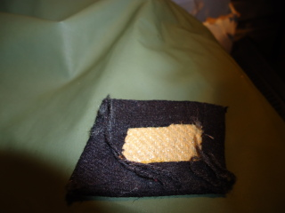 SS Collar Tab, Opinions please?