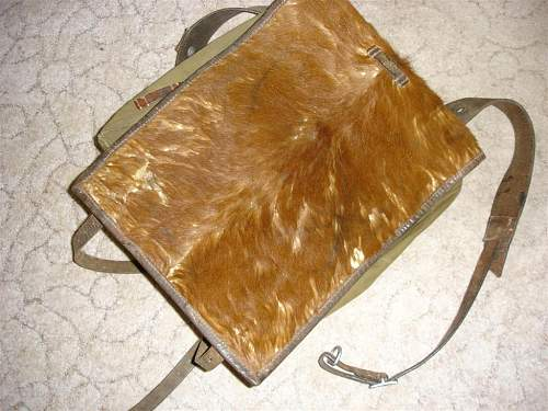 27th SS Volunteer Division Langemarck backpack.??