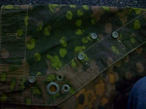 Zeltbahn SS.  camouflage a plane tree - question on originality???