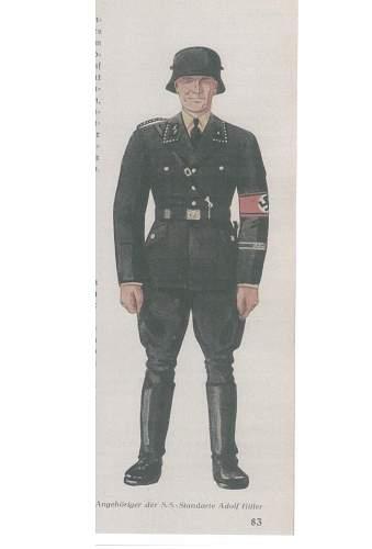A superb Black SS-VT PIONIERSTURMBANN portrait