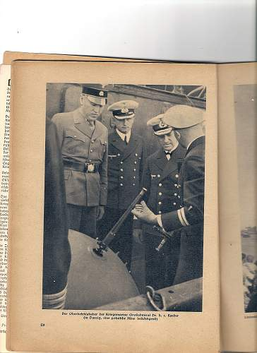 Click image for larger version.  Name:SS vizor on a SA uniform 1.jpg Views:203 Size:238.0 KB ID:30145