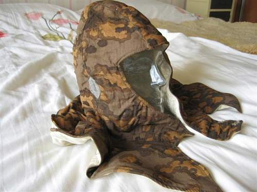 Thoughts on this SS camo hood