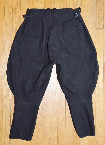 Need some opinions on these SS Breeches (?)...