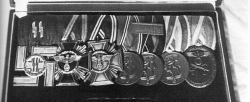 West Wall badge awarded to Waffen SS?
