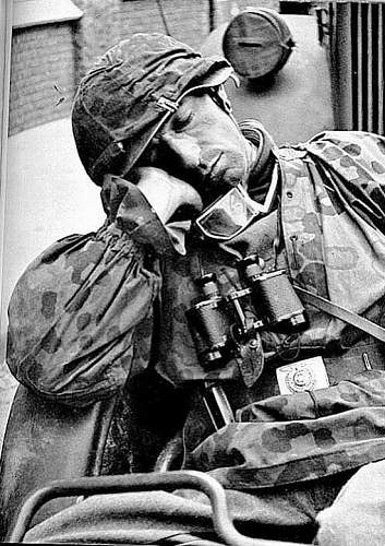 Click image for larger version.  Name:Waffen SS 1.jpg Views:121 Size:102.3 KB ID:331361