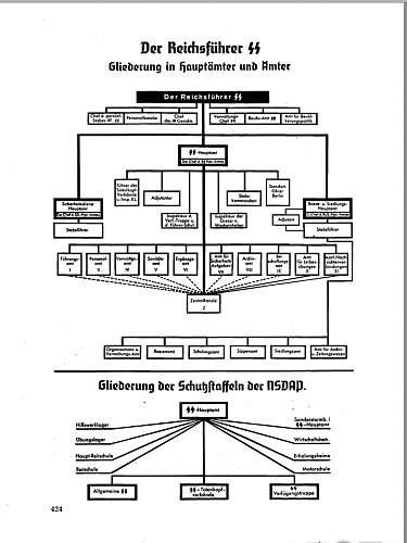 SS Hauptamt Aermelstreifen