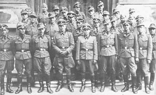 Ukrainian SS Uniform