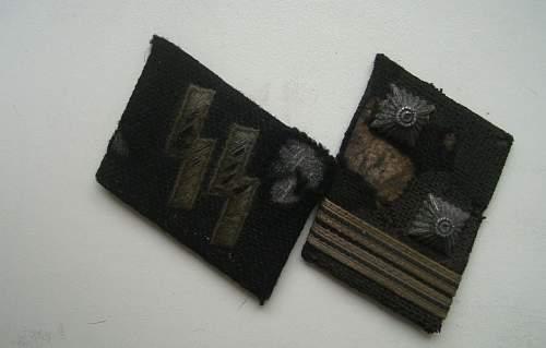 SS collar tabs