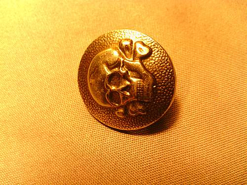 Fake or  Real SS uniform button?