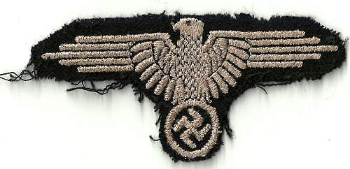 Embroidered sleeve eagle