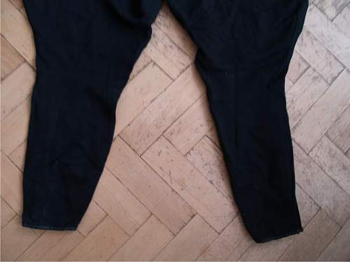 Click image for larger version.  Name:RZM trousers(9).jpg Views:65 Size:43.7 KB ID:410460