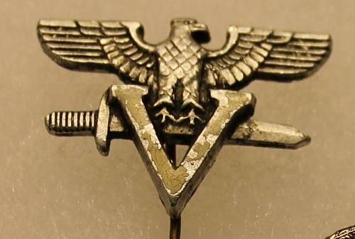 Romanian Einsatz Staffel Membership Pin?