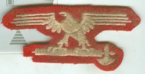 Italian Red Eagle SS patch, thoughts?