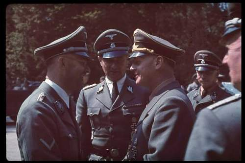 Click image for larger version.  Name:Himmler%20talking%20with%20Ribbentrop%20following%20the%20French%20armistice%20negotiations.jpg Views:239 Size:30.3 KB ID:431979