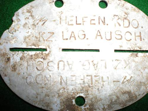 SS Dog Tag  Can Someone Translate Please?