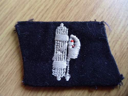 29th Waffen Grenadier Division SS Collar Tab in wear photo's