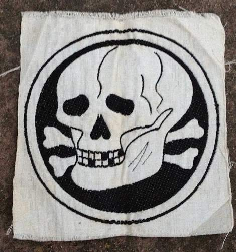 SS patch for sport shirt with skull, I have never seen