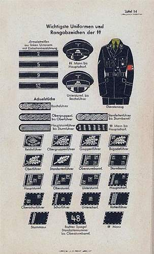 Name:  454704d1329375932t-ss-rusha-insignia-in-period-pictures-374px-uniformen_und_rangabzeichen_der_ss.jpg Views: 846 Size:  31.7 KB