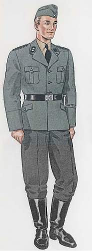 Click image for larger version.  Name:Grey_SS_uniform.jpg Views:57 Size:189.7 KB ID:495993