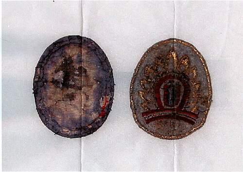 Delich Treasures.  Waffen SS als  die Armee Europas.