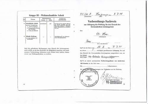 Silver Germanic Achievements Badge SS???