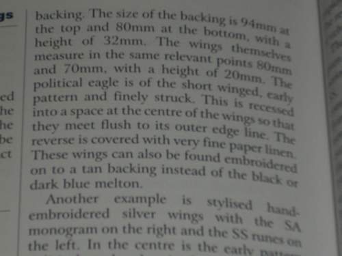 Any idea on this SS-Fliegersturm wing?
