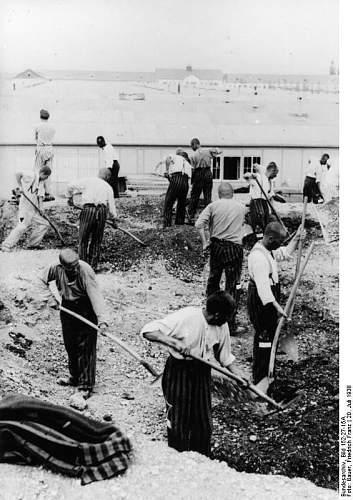 Click image for larger version.  Name:Bundesarchiv_Bild_152-27-15A,_Dachau,_Konzentrationslager.jpg Views:101 Size:77.8 KB ID:529918