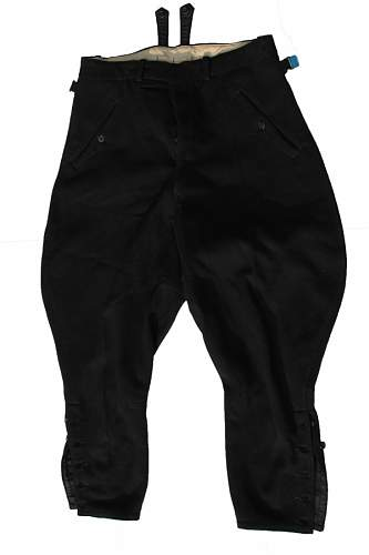 Click image for larger version.  Name:SS breeches.jpg Views:60 Size:196.0 KB ID:533791