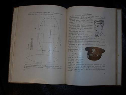 Cap in Shea Beaver book that went aglimmering