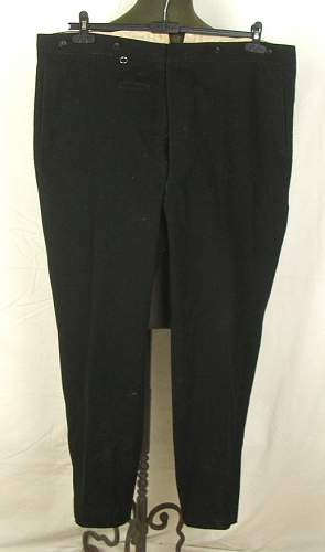 Click image for larger version.  Name:SS breeches ebay4.jpg Views:25 Size:45.6 KB ID:536220