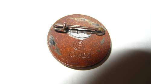 SS lapel pin/Adolf Hitler 1933 pin